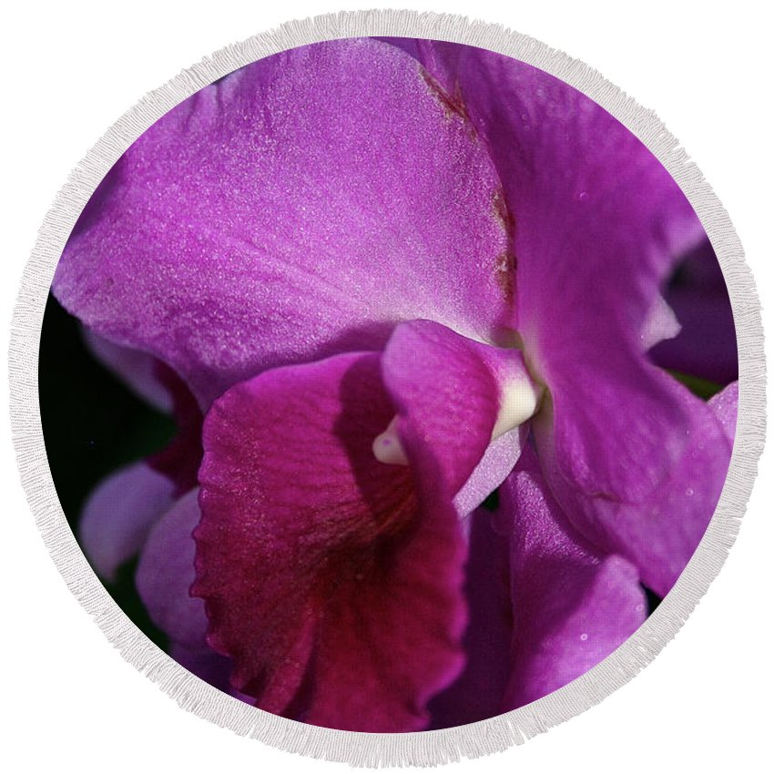 Flower Round Beach Towel featuring the photograph Fresh Orchid by Susan Herber