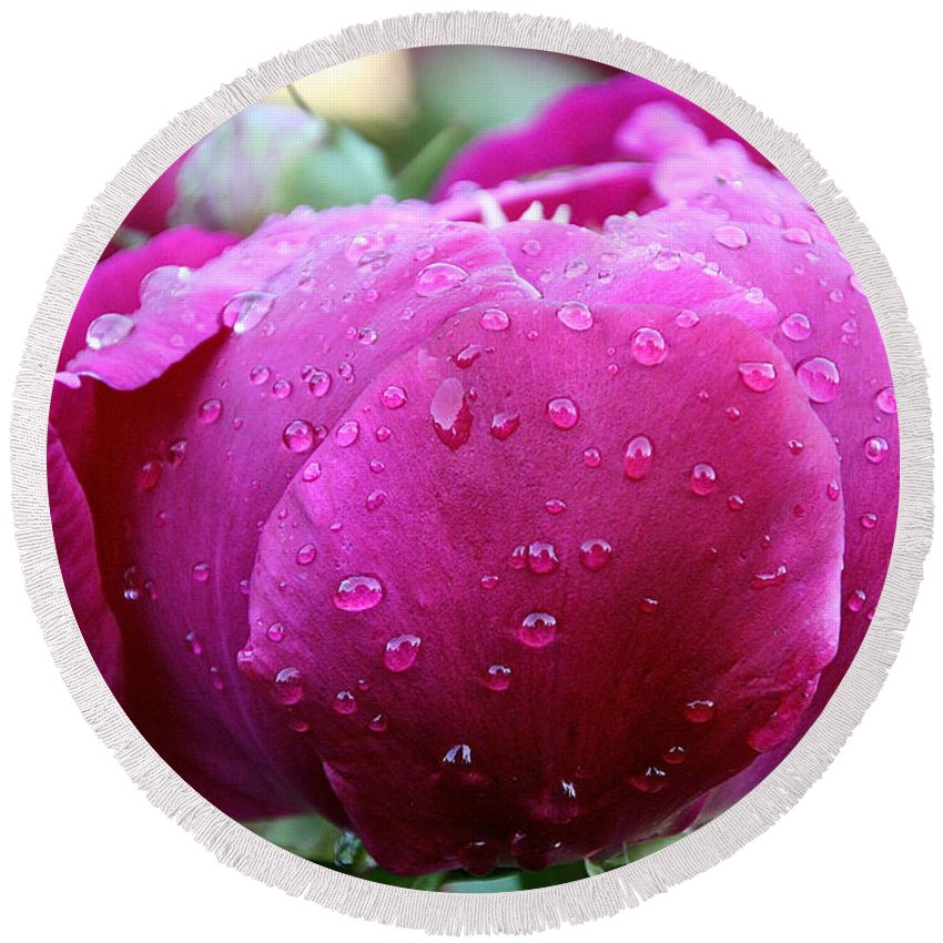 Flower Round Beach Towel featuring the photograph Fresh Rain by Susan Herber