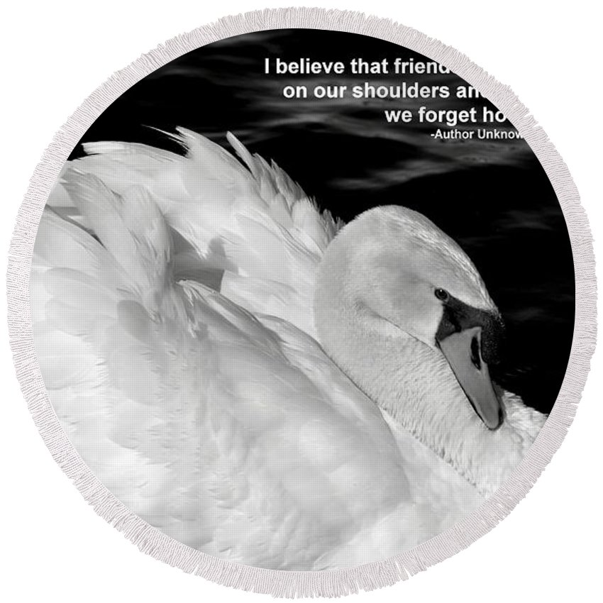 White Swan Round Beach Towel featuring the photograph Friends by Deb Halloran