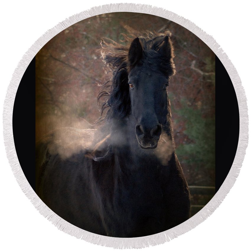 Horses Round Beach Towel featuring the photograph Frost by Fran J Scott