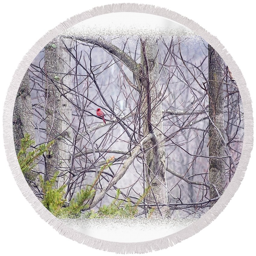 Cardinal Round Beach Towel featuring the digital art Frosty Morning Song by Anita Hubbard