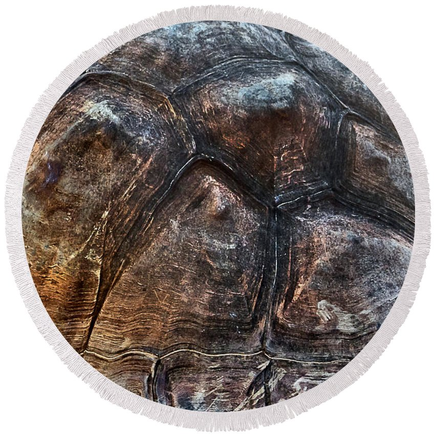 #galapagos Tortoise Round Beach Towel featuring the photograph Galapagos Tortoise Shell by Miroslava Jurcik