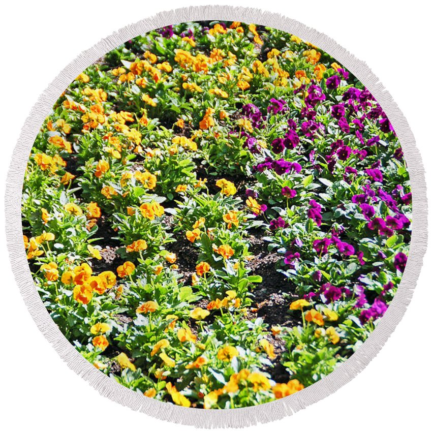 Flower Round Beach Towel featuring the photograph Garden Flowers by Aimee L Maher ALM GALLERY