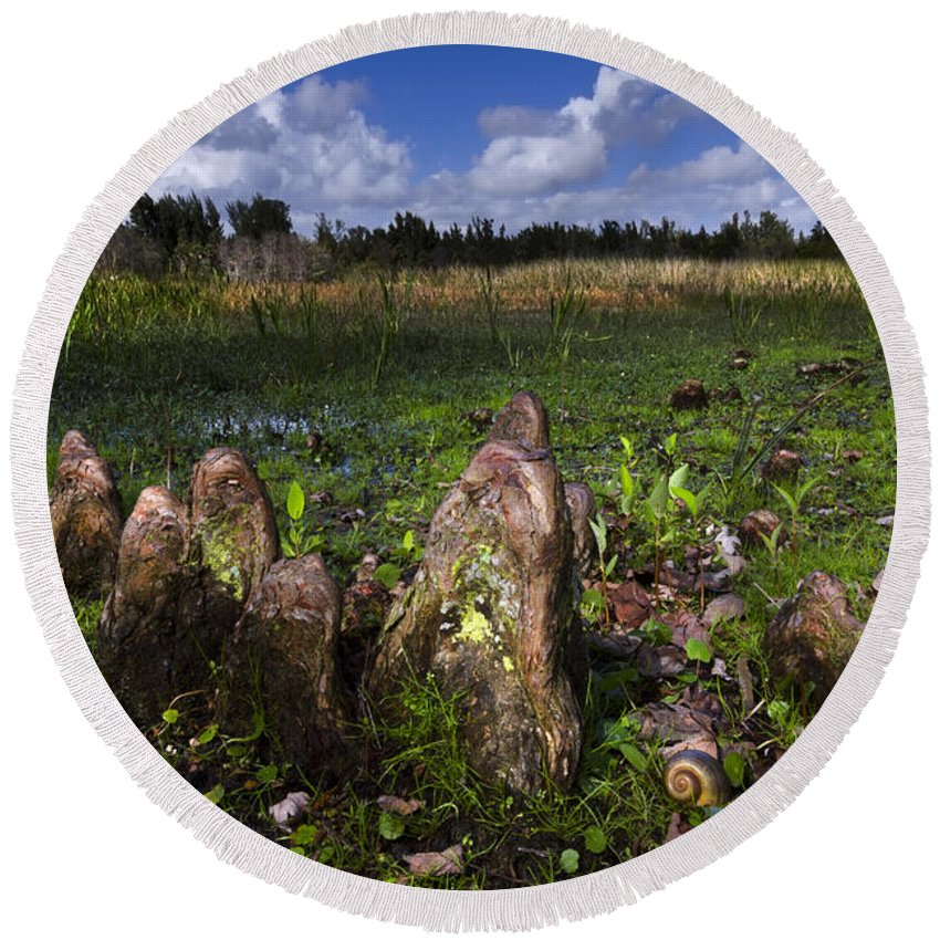 Clouds Round Beach Towel featuring the photograph Garden In The Glades by Debra and Dave Vanderlaan