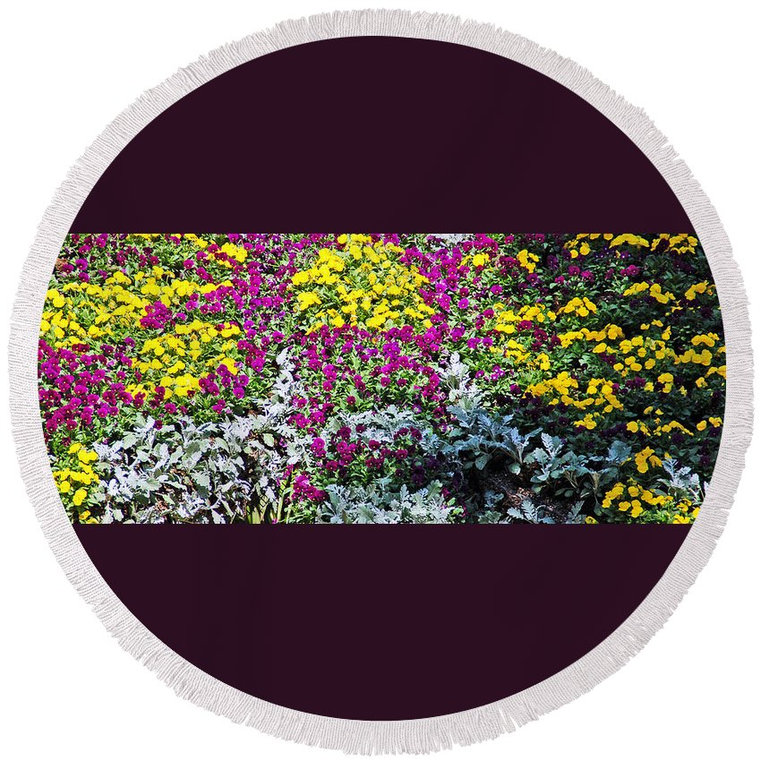 Flower Round Beach Towel featuring the photograph Garden Variety by Aimee L Maher ALM GALLERY