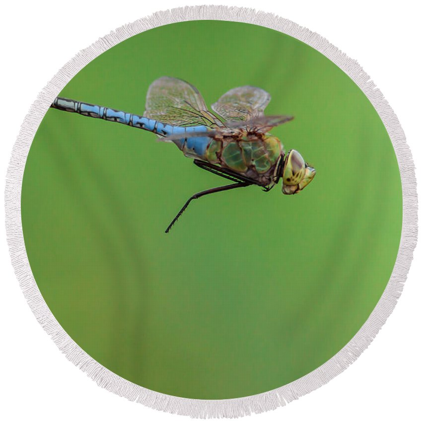 Dragonfly Round Beach Towel featuring the photograph Gear Malfunction by Robert Frederick