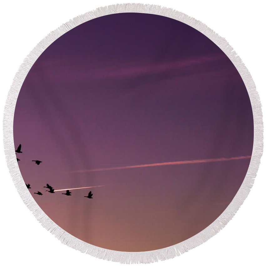 Geese Round Beach Towel featuring the photograph Geese In Formation by Scott Hervieux