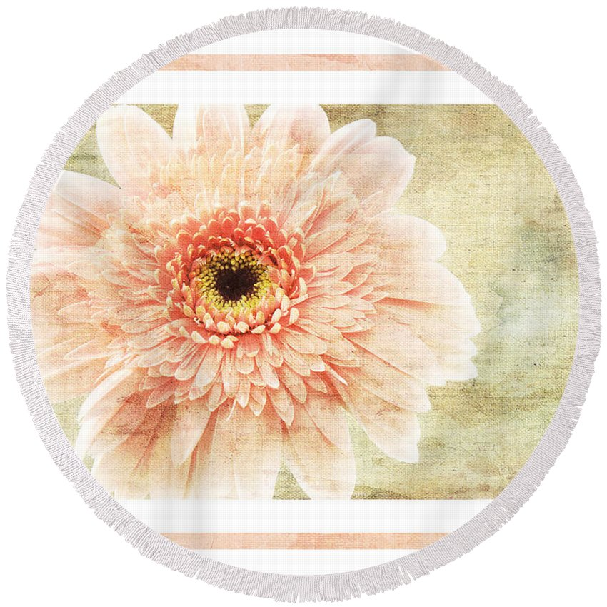 Gerber Round Beach Towel featuring the photograph Gerber Daisy 1 by Andee Design