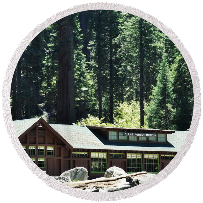 Giant Forest Museum Round Beach Towel featuring the photograph Giant Forest Museum Portrait by Kyle Hanson