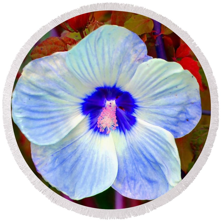 Hibiscus Round Beach Towel featuring the photograph Giant Hibiscus by Deena Stoddard