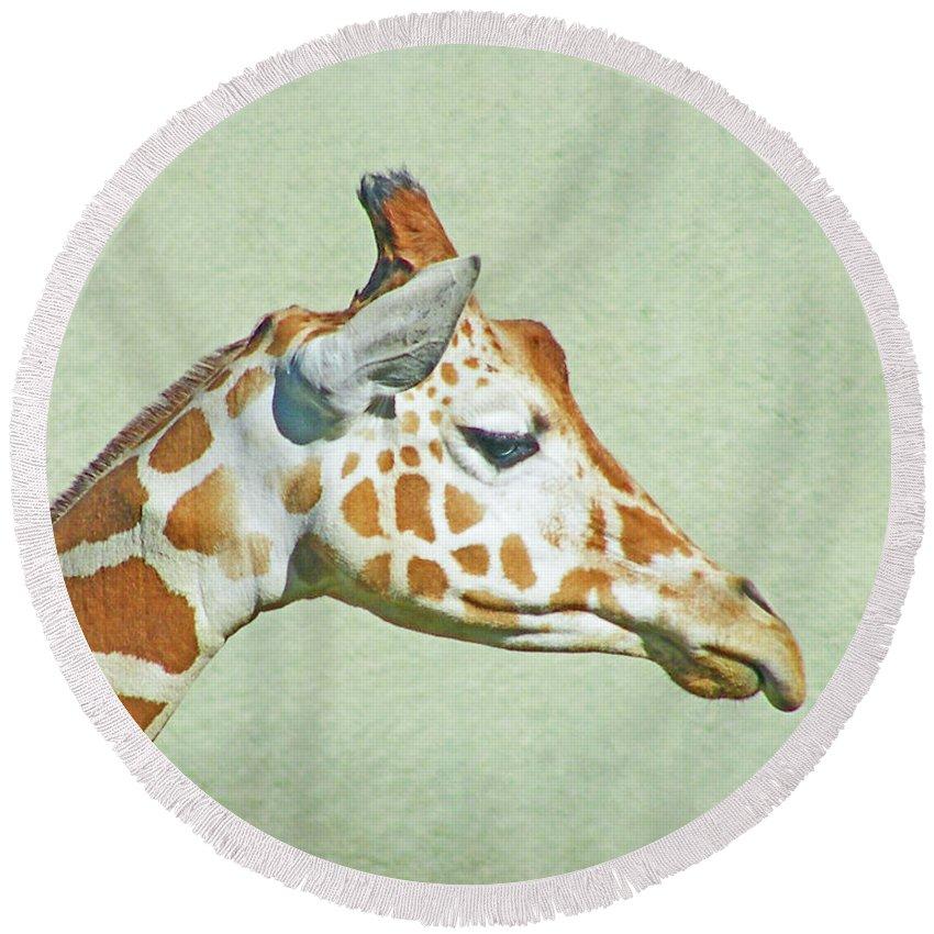 Giraffe Round Beach Towel featuring the digital art Giraffe Mug Shot by Lizi Beard-Ward