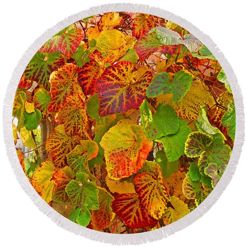 Autumn Leaves Round Beach Towel featuring the photograph Glorious Autumn Leaves by Gill Billington