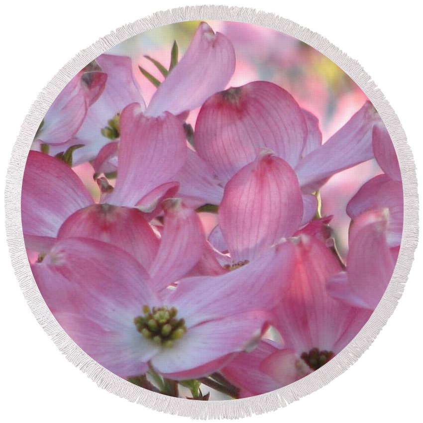 Pink Dogwood Round Beach Towel featuring the photograph Glorious Spring Dogwood by Angela Davies