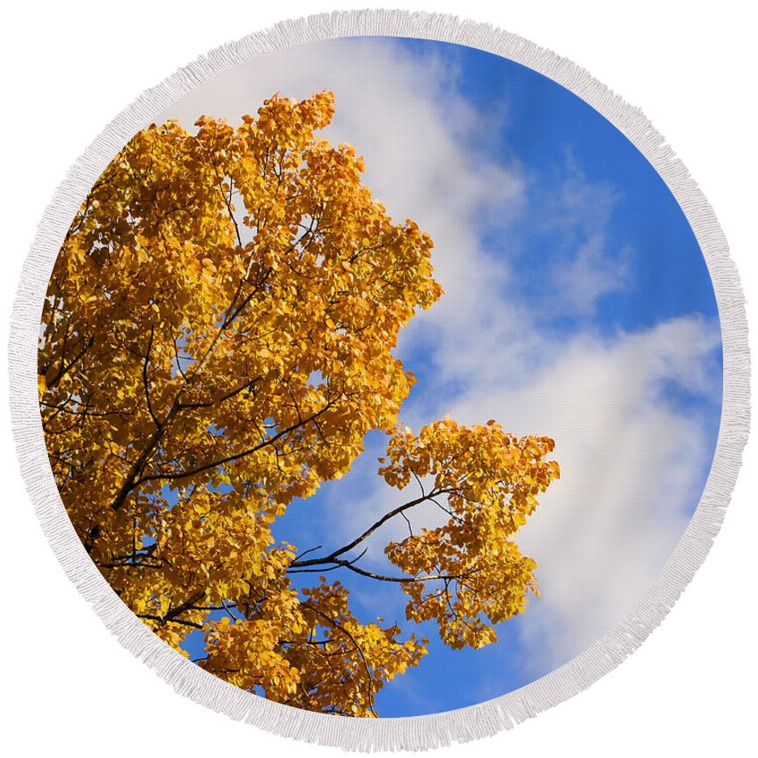 Leaves Round Beach Towel featuring the photograph Golden Autumn Leaves And Blue Sky by Smilin Eyes Treasures