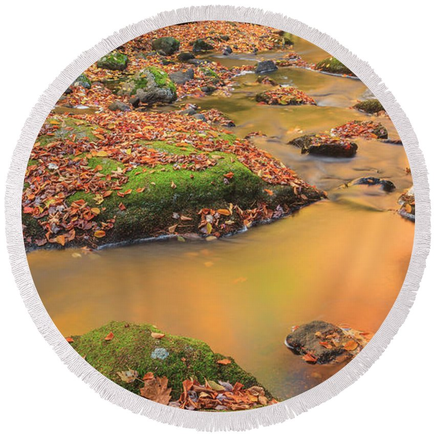 New England Autumn Round Beach Towel featuring the photograph Golden by Bill Wakeley