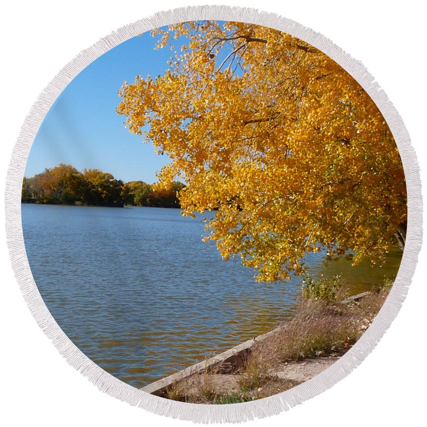 Trees Round Beach Towel featuring the photograph Golden Cottonwoods by Susan Porter
