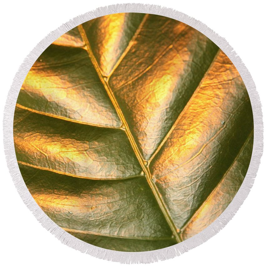 Gold Round Beach Towel featuring the photograph Golden Leaf 2 by Carol Groenen