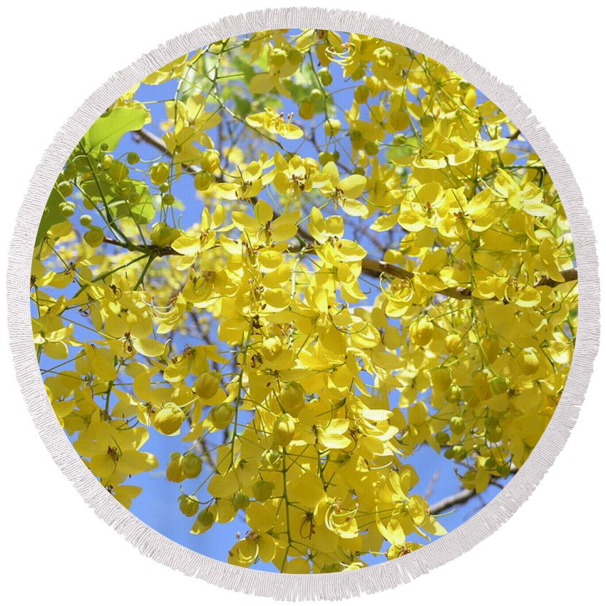 Yellow Round Beach Towel featuring the photograph Golden Medallion Shower Tree by Mary Deal