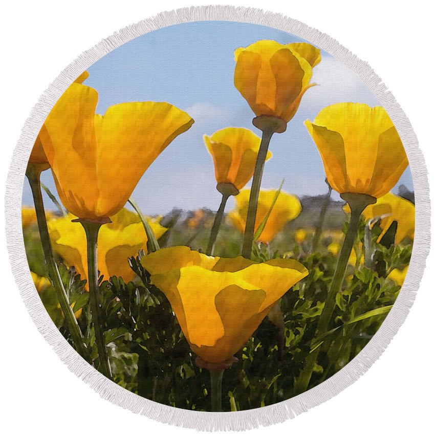 Poppy Round Beach Towel featuring the photograph Golden Poppies by Sharon Foster