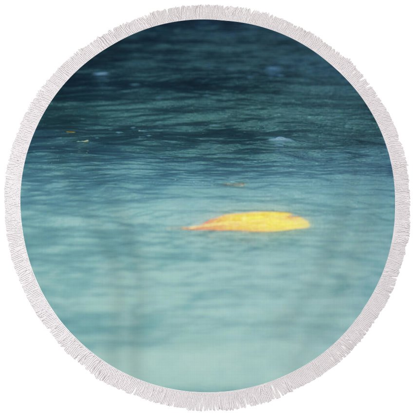 Leaf Round Beach Towel featuring the photograph Golden Reflections by Melanie Lankford Photography