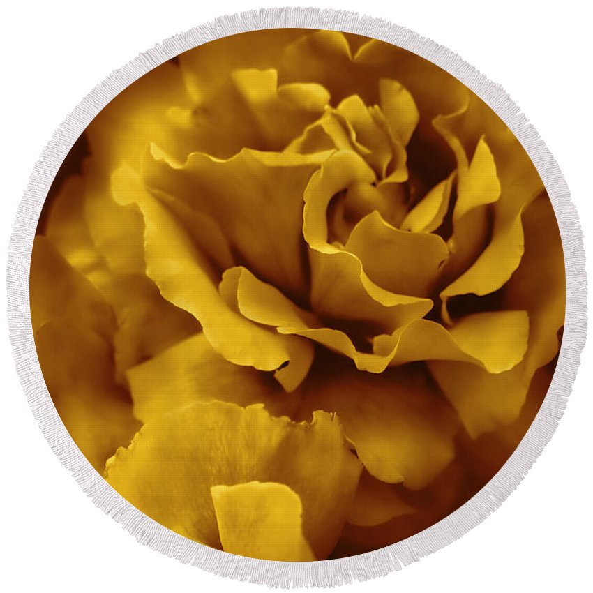 Rose Round Beach Towel featuring the photograph Golden Yellow Roses by Jennie Marie Schell