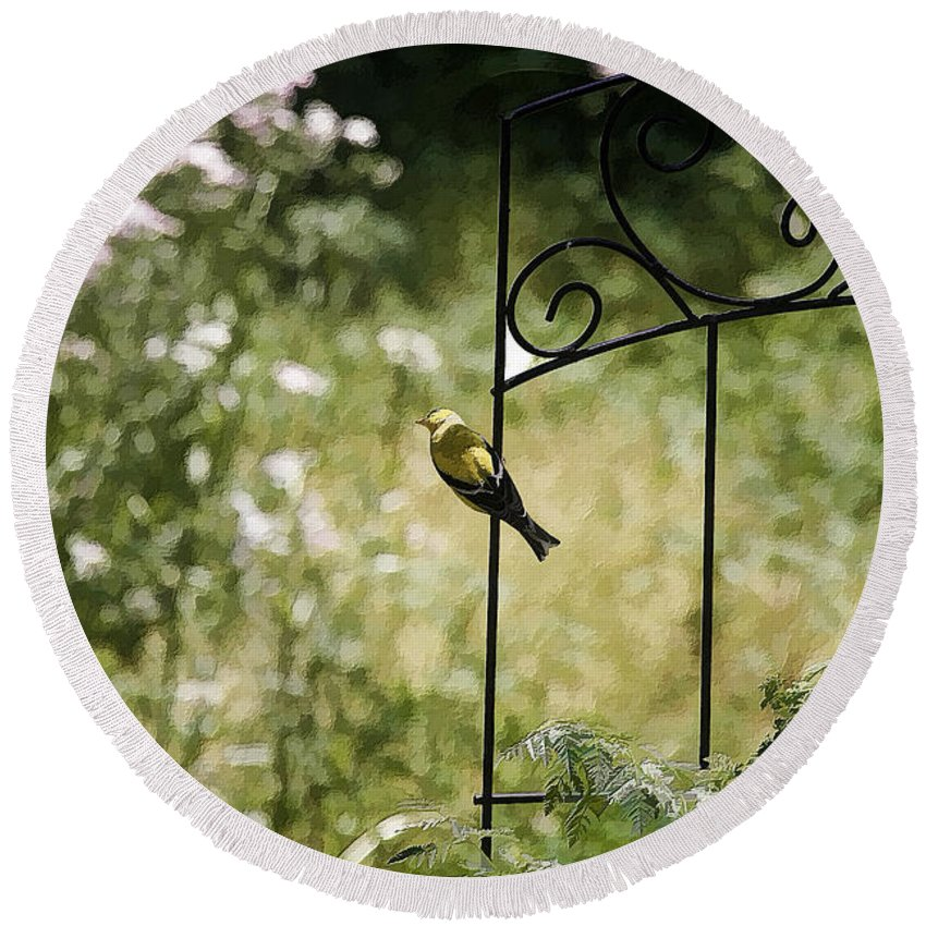 Bird Round Beach Towel featuring the photograph Goldfinch On The Lookout -19 by Ericamaxine Price