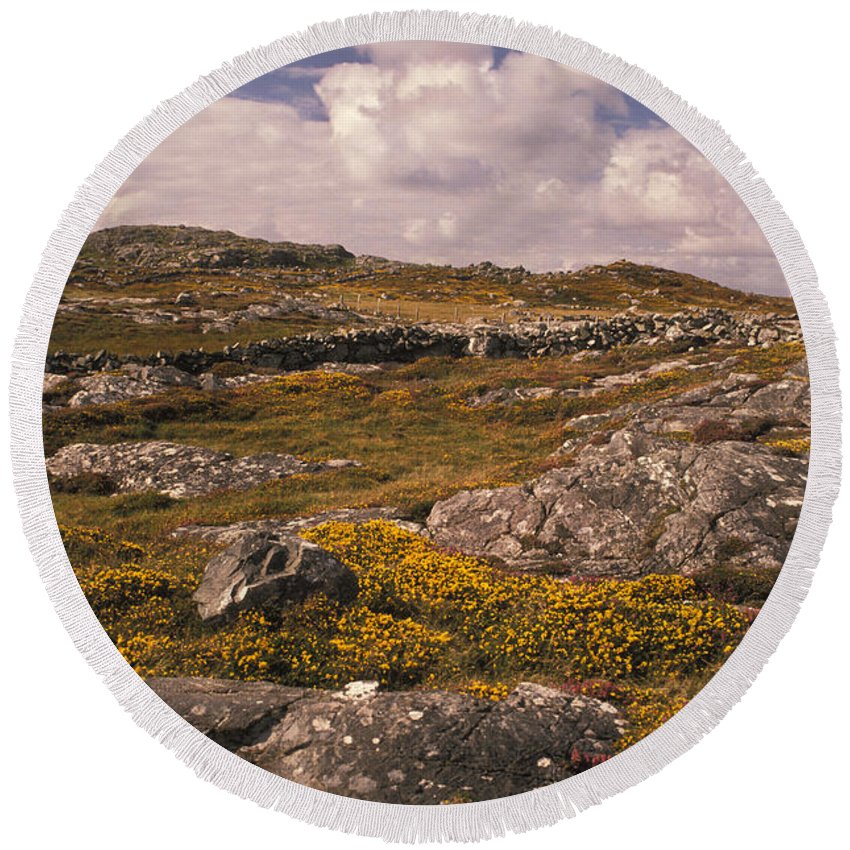 Gorse Round Beach Towel featuring the photograph Gorse And Heather by Ron Sanford