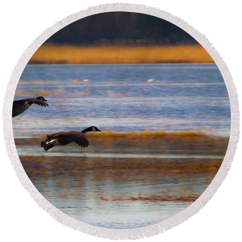 Canada Round Beach Towel featuring the photograph Got Your Back by Scott Hervieux