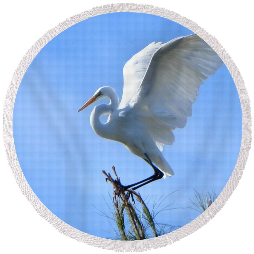 Heron Round Beach Towel featuring the photograph Graceful Landing by Deb Halloran
