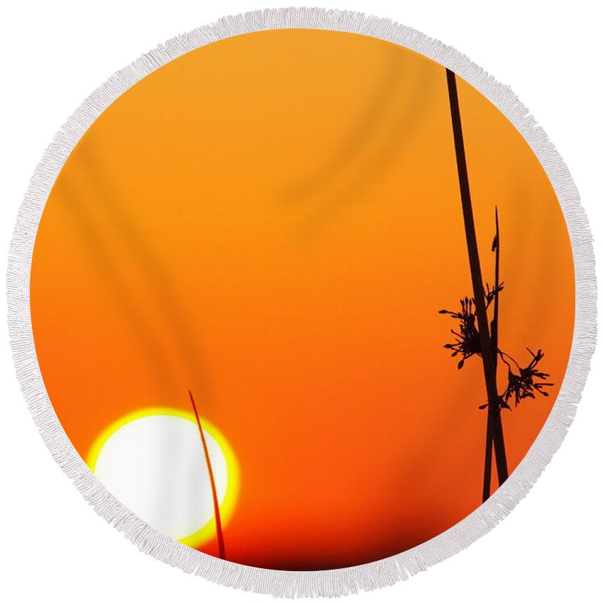 Sunset Round Beach Towel featuring the photograph Grass At Sunset 2am-13695 by Andrew McInnes