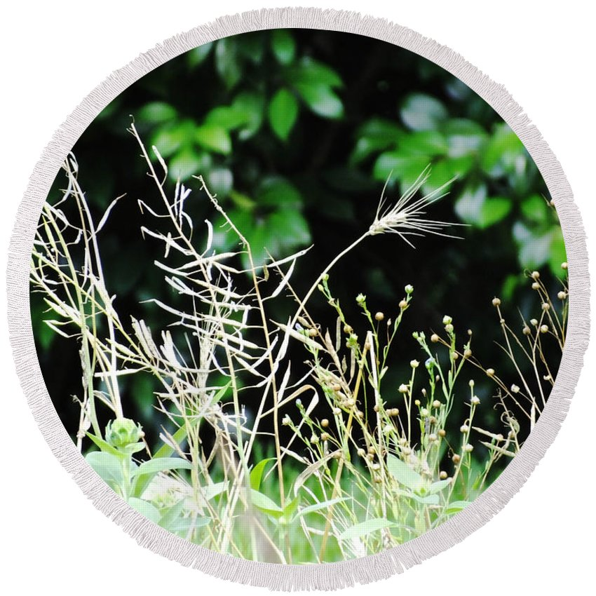 Grasses Round Beach Towel featuring the photograph Grasses by Lizi Beard-Ward