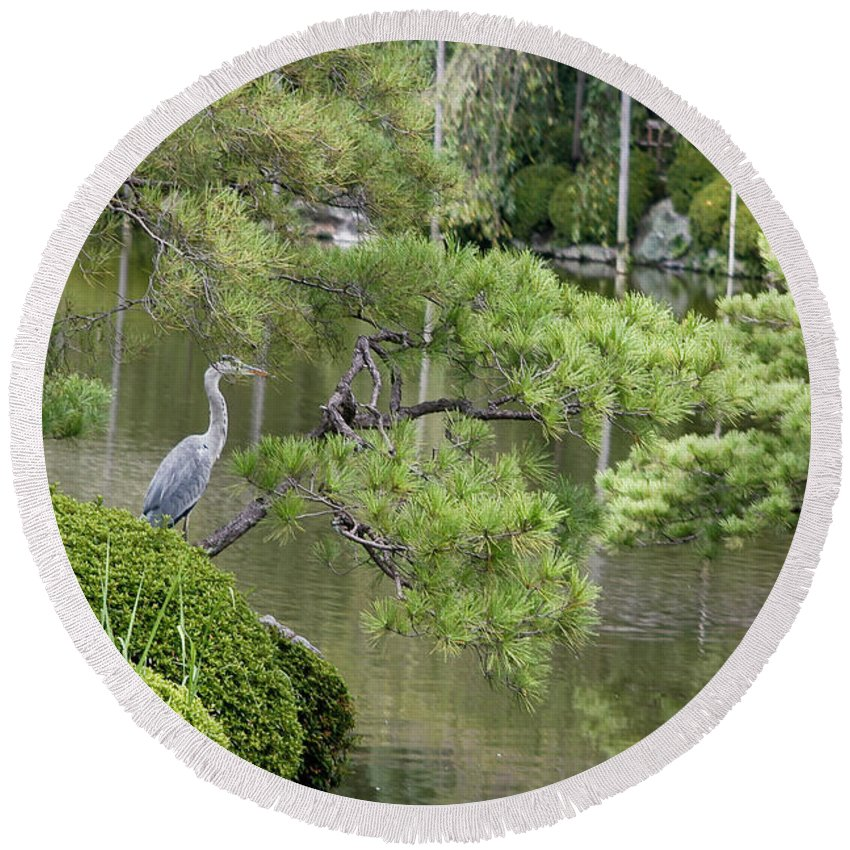 Blue Round Beach Towel featuring the photograph Great Blue Heron In Pond Kyoto Japan by Thomas Marchessault