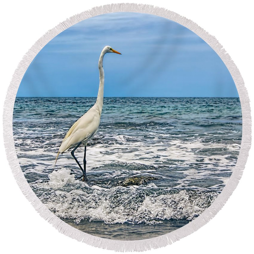 Great Egret Round Beach Towel featuring the photograph Great Egret by Olga Hamilton