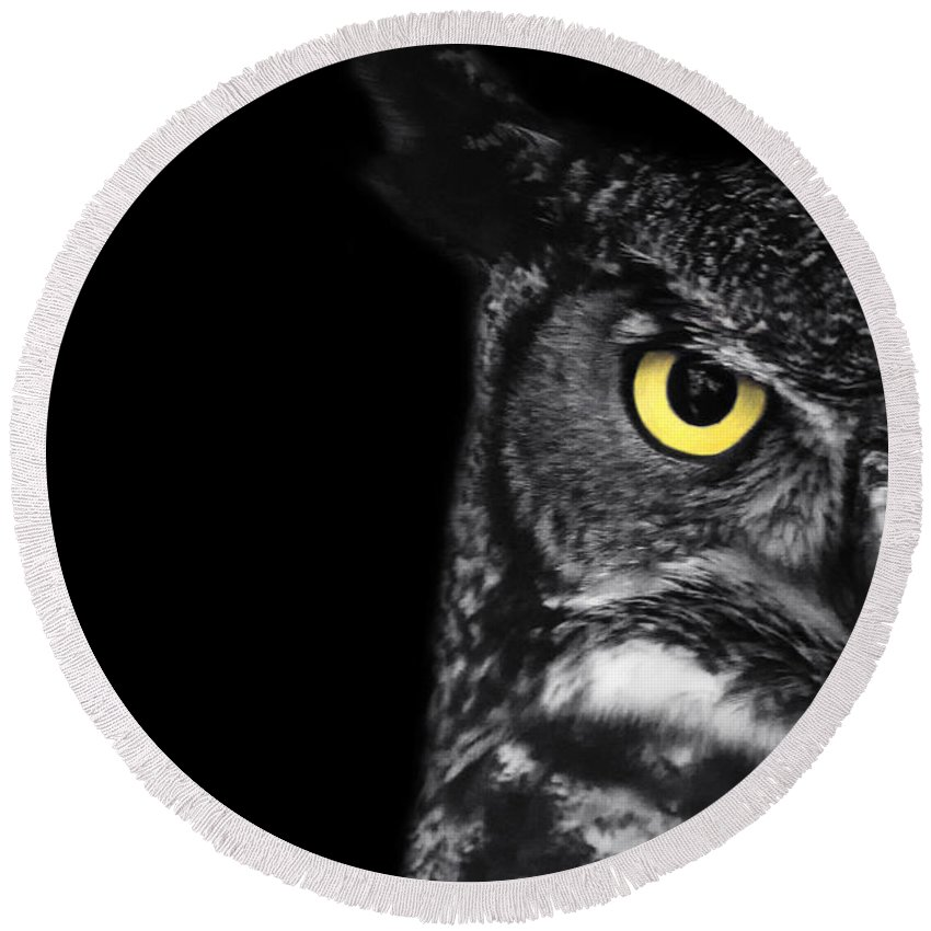 Great Horned Owl Round Beach Towel featuring the photograph Great Horned Owl Photo by Stephanie McDowell