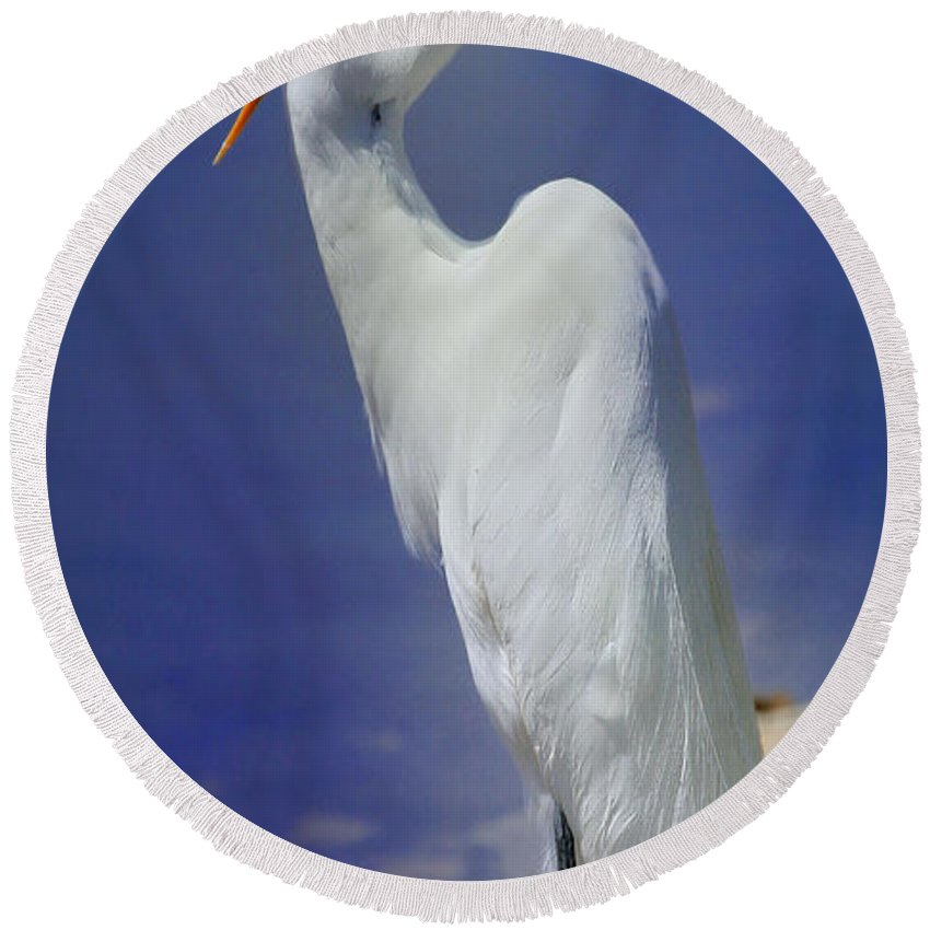 Bird Round Beach Towel featuring the photograph Great White Egret 2 by John Absher