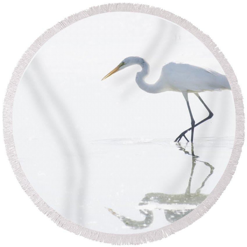 Great Egret Round Beach Towel featuring the photograph Great White Egret Reflection by Saija Lehtonen