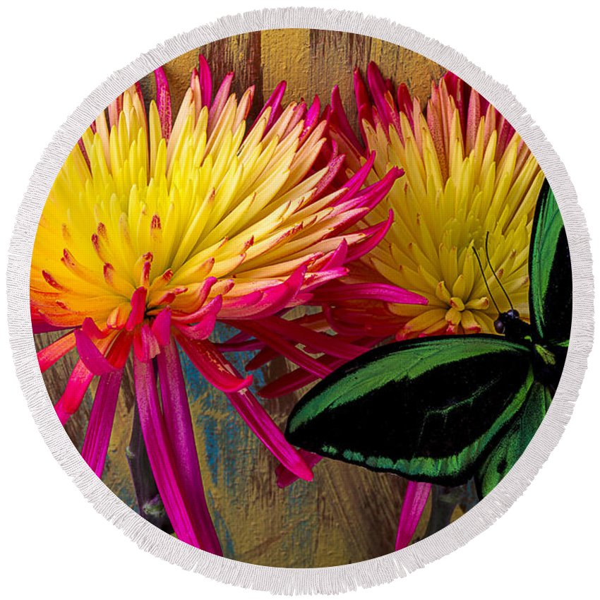 Red Yellow Spider Round Beach Towel featuring the photograph Green Butterfly On Fire Mums by Garry Gay