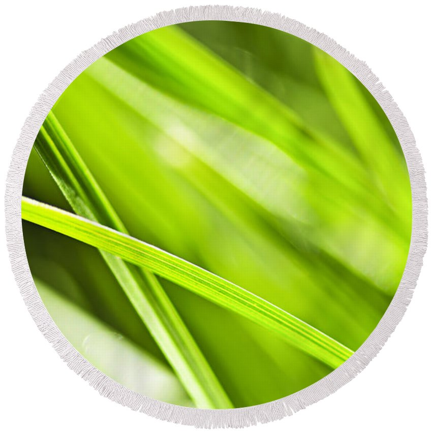 Grass Round Beach Towel featuring the photograph Green Grass Abstract by Elena Elisseeva