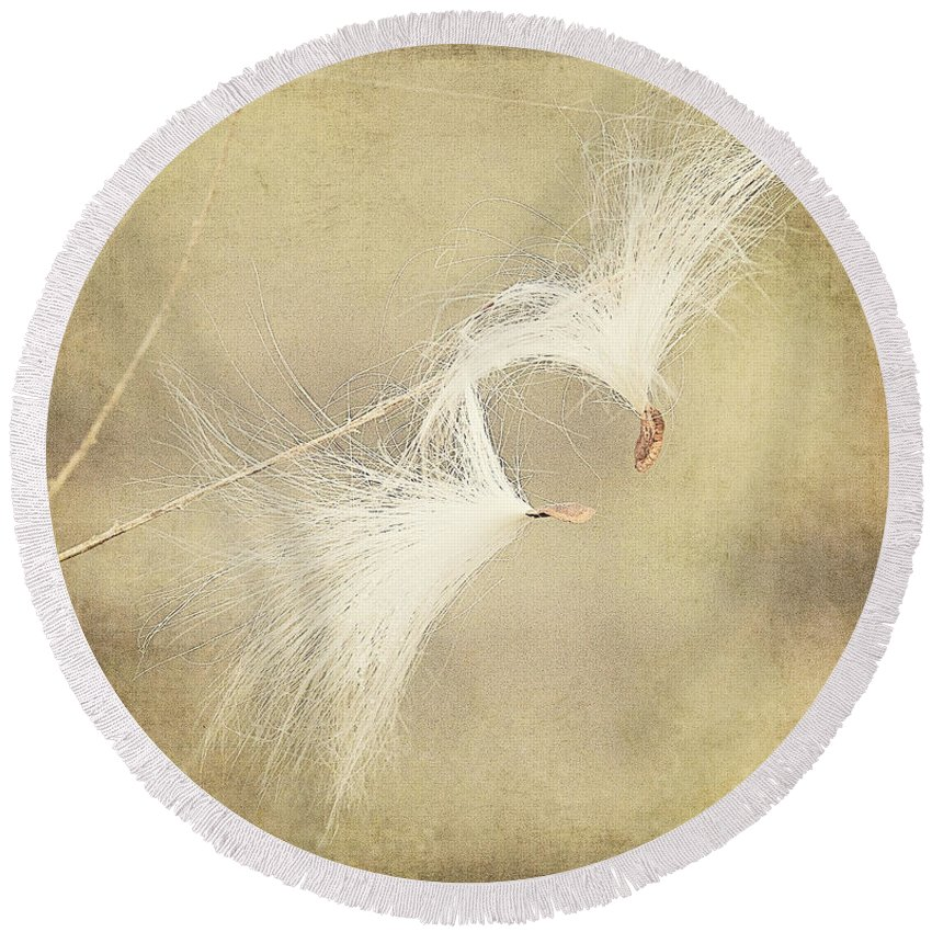 Seeds Round Beach Towel featuring the photograph Hanging On by Pam Holdsworth