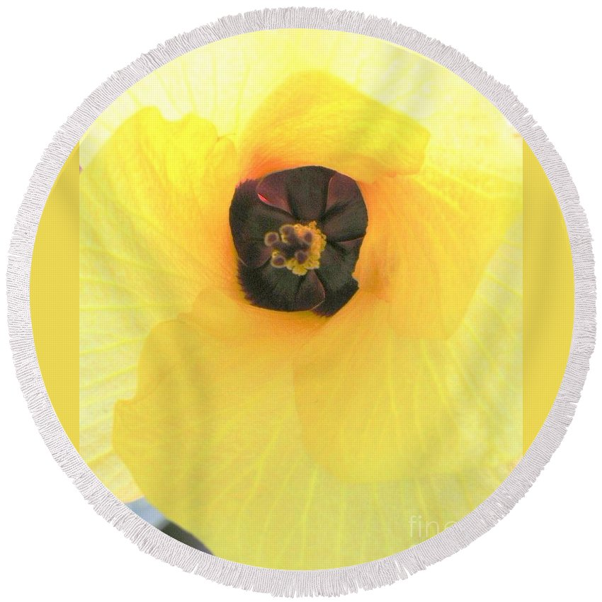 Hau Blossom Round Beach Towel featuring the photograph Hau Blossom by Mary Deal