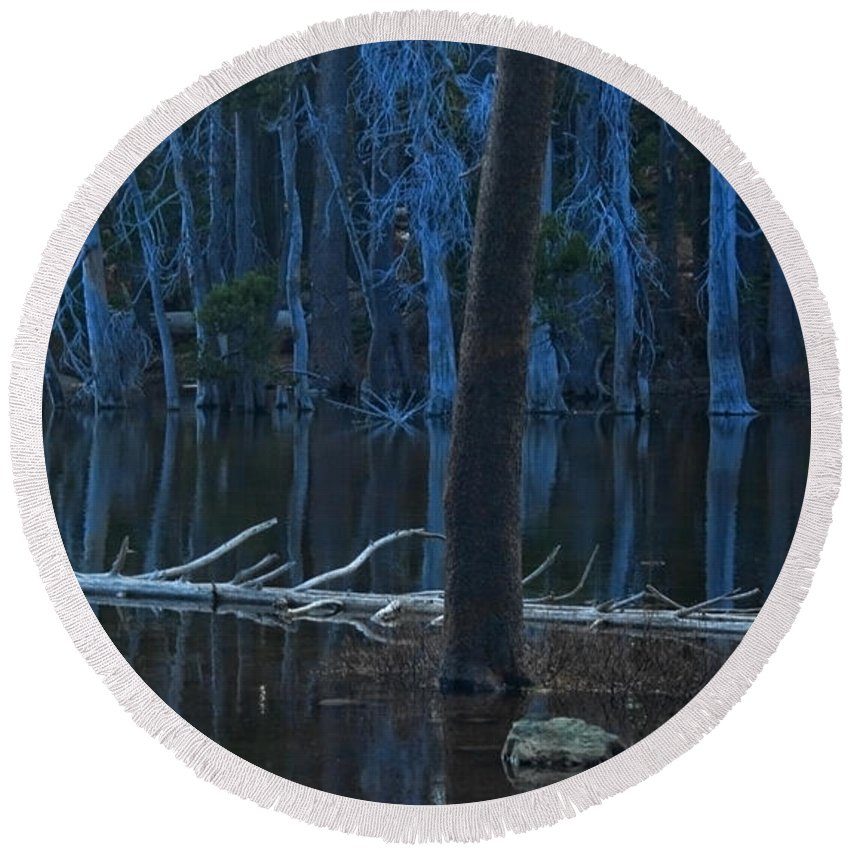 Lake Round Beach Towel featuring the photograph Haunted Forest by Donna Blackhall