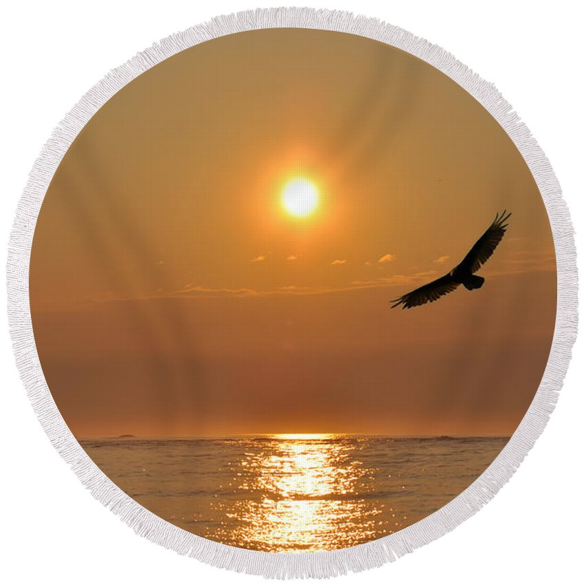 Hawk Round Beach Towel featuring the photograph Hawk At Sunrise by Bill Cannon