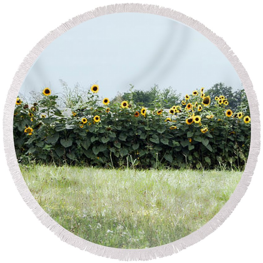 Hay Round Beach Towel featuring the photograph Hay Bales And Sunflowers by Cricket Hackmann