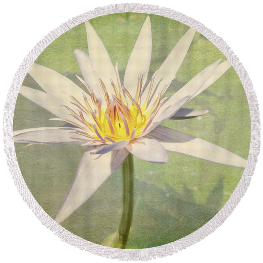 Waterlily Round Beach Towel featuring the photograph Heart Of Gold by Linda Lees