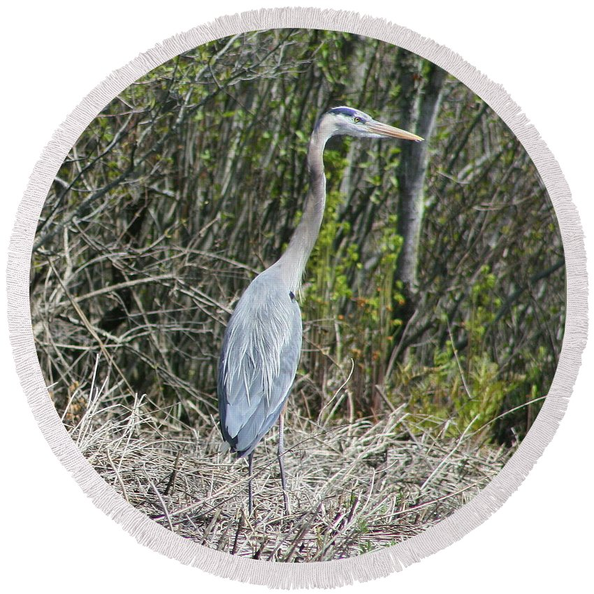Heron Round Beach Towel featuring the photograph Heron Height by Neal Eslinger