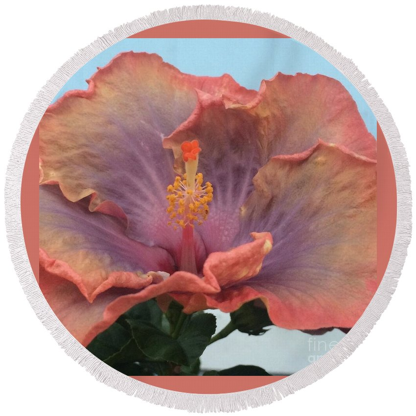 Hibiscus Round Beach Towel featuring the photograph Hibiscus by Robin Maria Pedrero