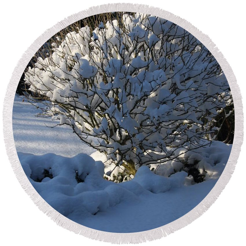 Winter Round Beach Towel featuring the photograph Hibiskus In The Wintertime by Christiane Schulze Art And Photography