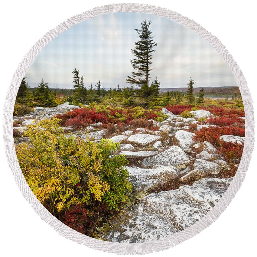 West Virginia Round Beach Towel featuring the photograph Highlands Of West Virginias Dolly Sods by Bill Swindaman