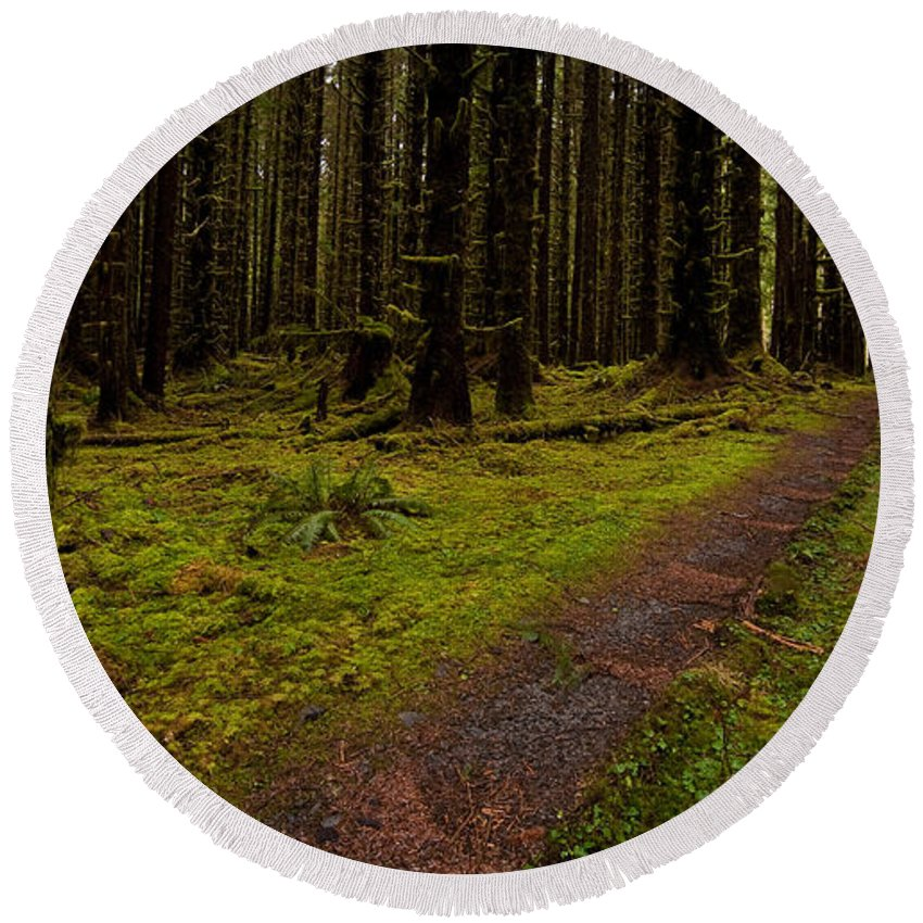 Hoh Rainforest Round Beach Towel featuring the photograph Hoh Rainforest Road by Mike Reid