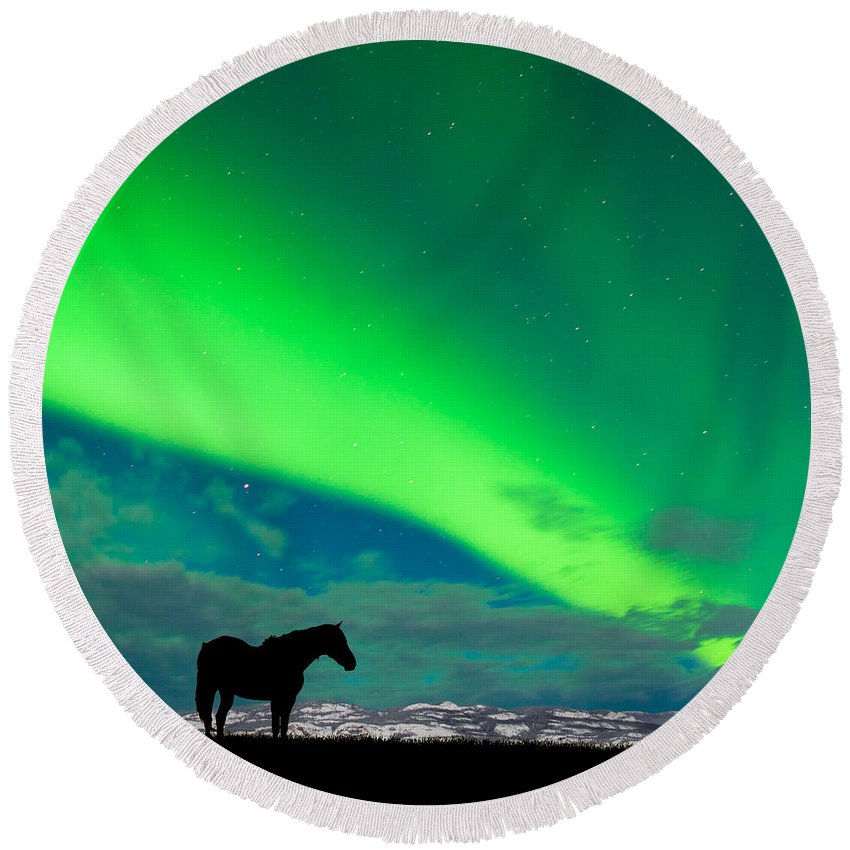 Alaska Round Beach Towel featuring the photograph Horse Distant Snowy Peaks With Northern Lights Sky by Stephan Pietzko